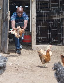 Nceba Jakavula, King William's Town Chicken Farmer, Talks about his journey.